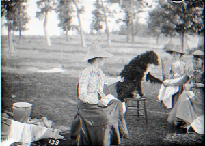 Glass negative image